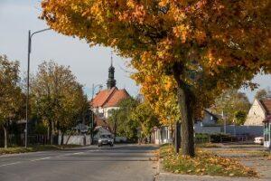 jesień w Pińczowie